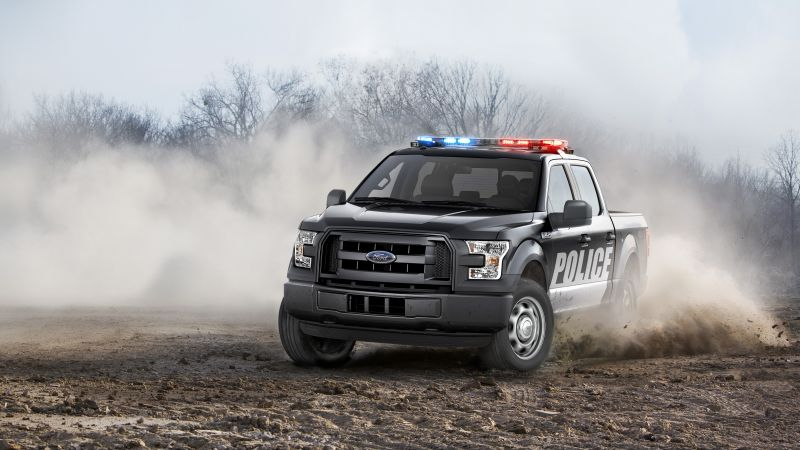 Ford F150, Safety car (horizontal)