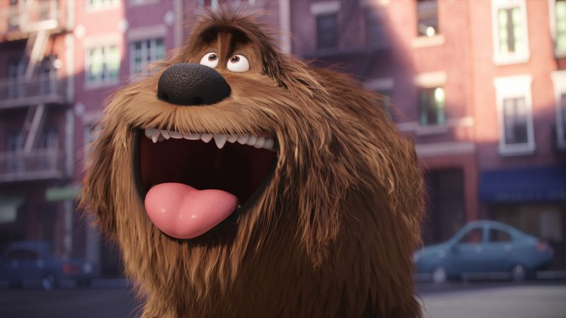 The Secret Life of Pets, duke, dog, Best Animation Movies of 2016, cartoon (horizontal)