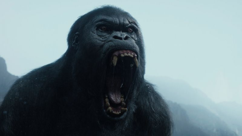 The Legend of Tarzan, gorilla, best movies 2016 (horizontal)