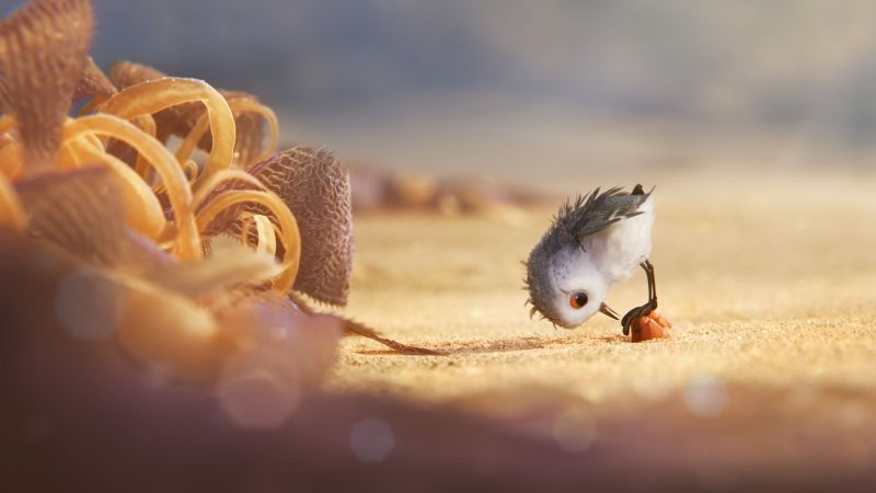 Piper, bird, pixar (horizontal)