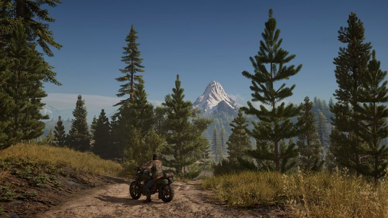 Days Gone, survival horror, bike, PS 4, best games (horizontal)