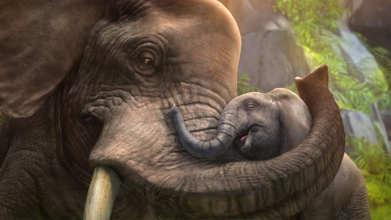 Elephant, cub, zoo tycoon, animals, grey, art, tourism (horizontal)
