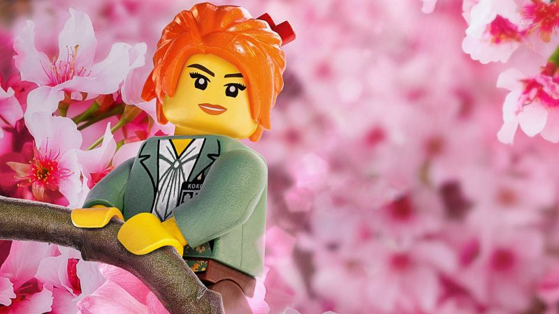 The LEGO Ninjago Movie, Misako, 4k (horizontal)