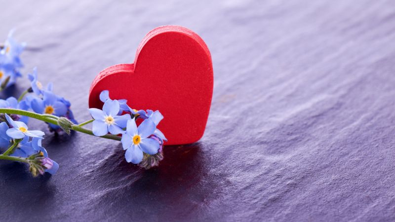 love image, heart, flower, 4k (horizontal)