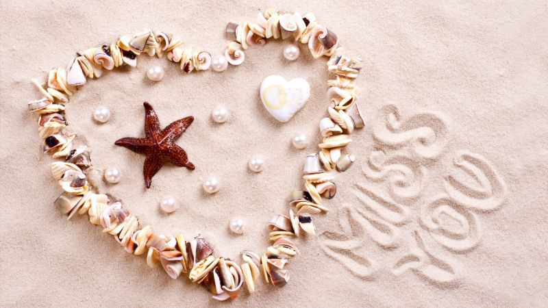 love image, heart, starfish, shell, shore, 4k (horizontal)