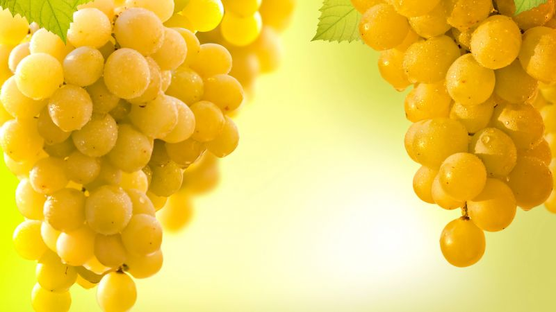 grapes, 5k (horizontal)
