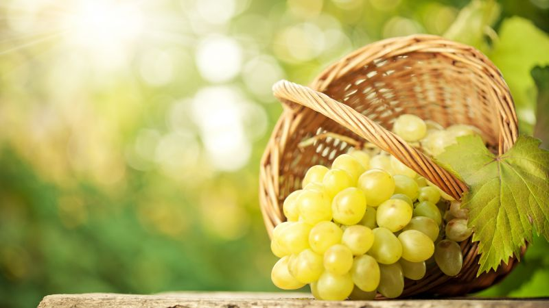 grapes, 8k (horizontal)