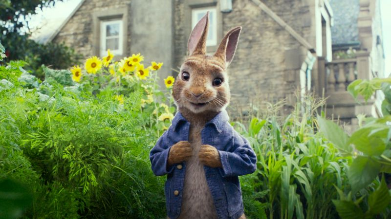 Peter Rabbit, 4k (horizontal)