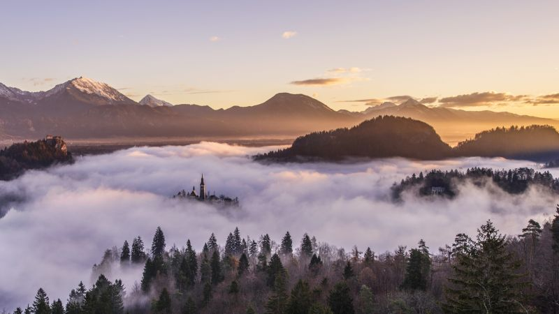 fog, mountains, forest, 5k (horizontal)