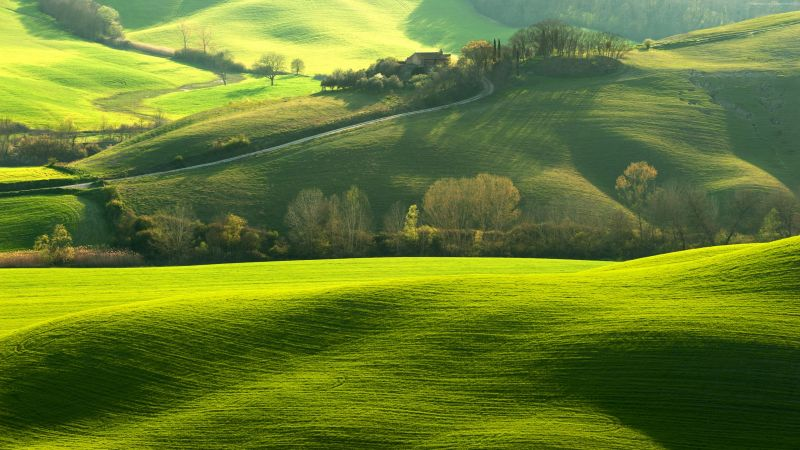 Tuscany, Italy, Europe, hills, green, field, 4K (horizontal)