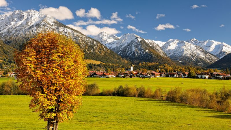 Allgaeu, Germany, Europe, mountains, autumn, tree, 5k (horizontal)