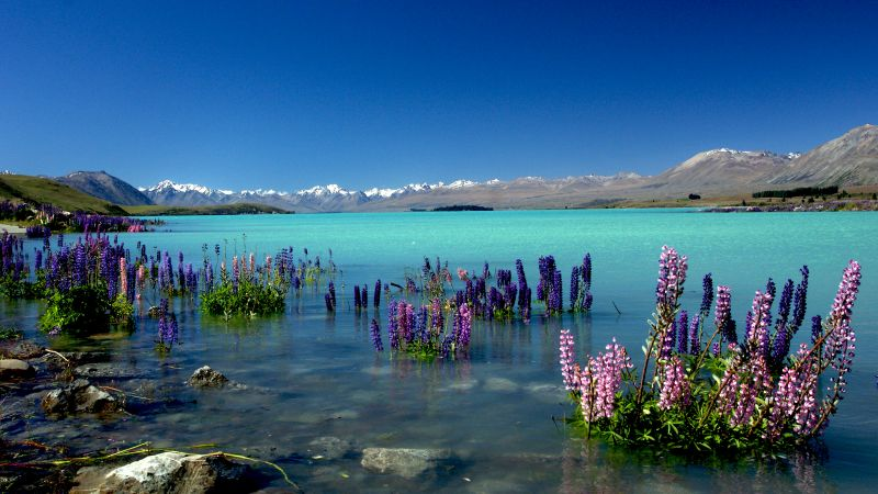Lake Tekapo, New Zealand, mountains, 4k (horizontal)
