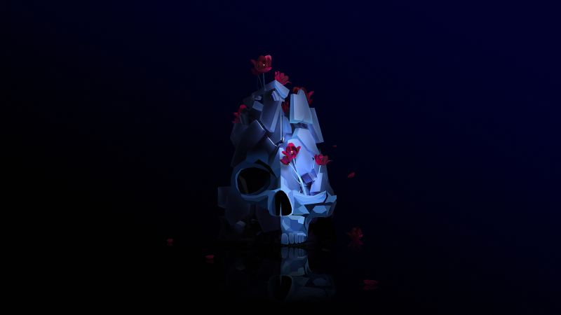 skull, flower, 3D, HD (horizontal)