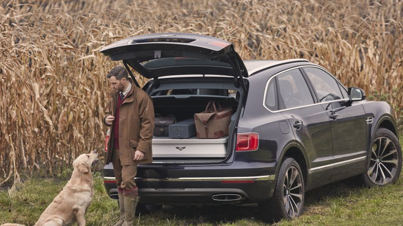 Bentley Bentayga Field Sports, 2018 Cars, dog, 4k (horizontal)