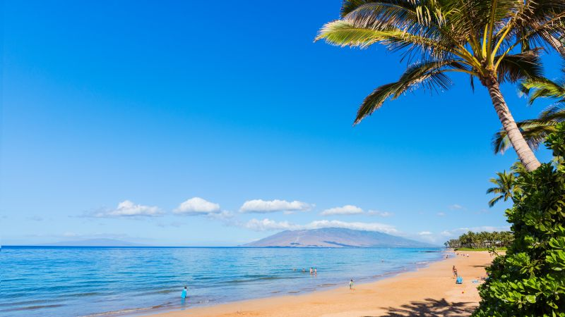 Maui, Hawaii, beach, ocean, coast, palm, sky, 5k (horizontal)