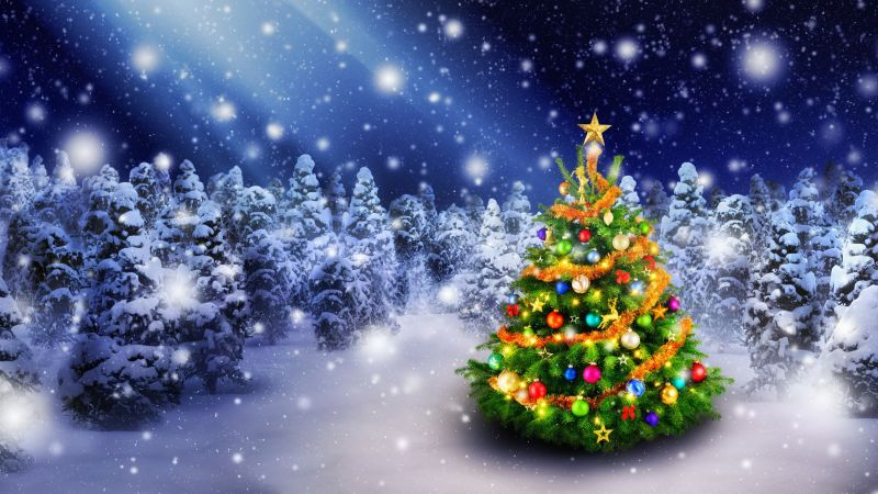 Christmas, New Year, snow, fir-tree, 5k (horizontal)
