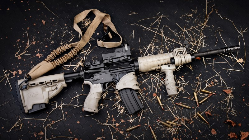 AR-15, TAN, build, Gilboa Snake, double barrel, custom, ammunition, bullets (horizontal)