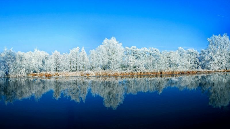 lake, forest, snow, winter, 5k (horizontal)