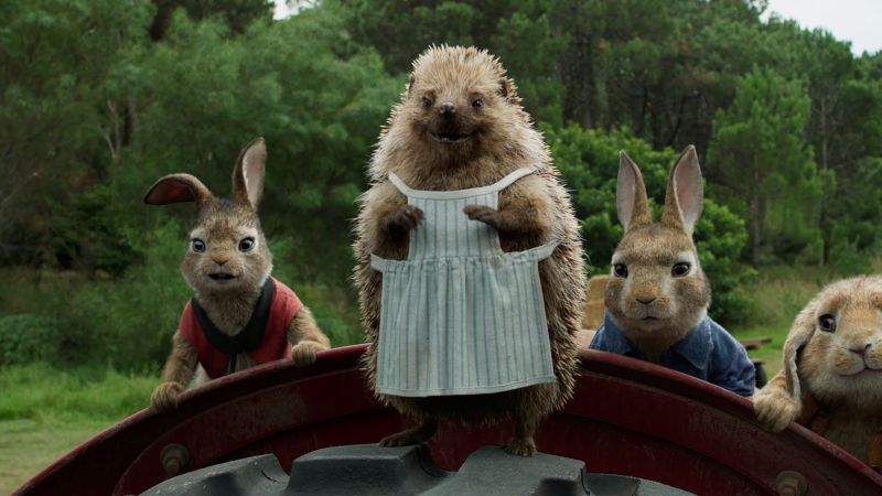 Peter Rabbit, hedgehog, 4k (horizontal)