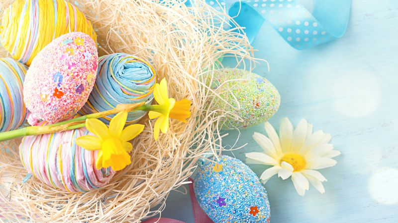Easter, eggs, flower, 8k (horizontal)