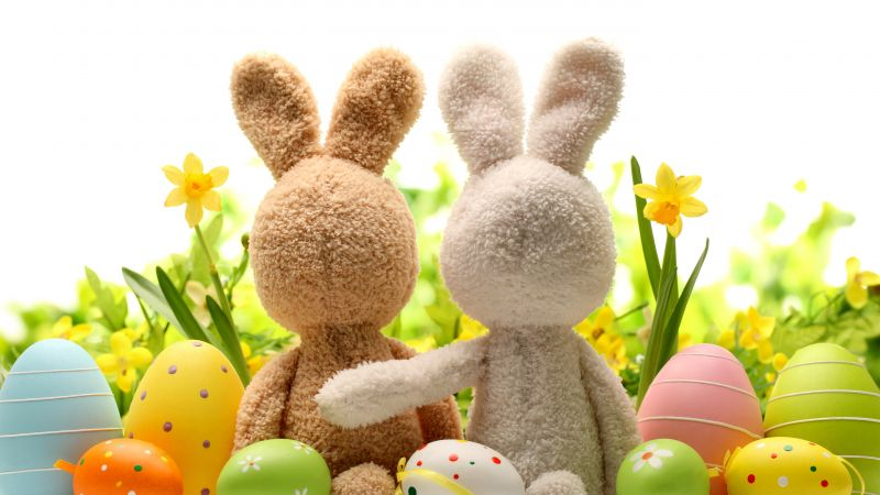 Easter, eggs, flower, rabbit, 5k (horizontal)