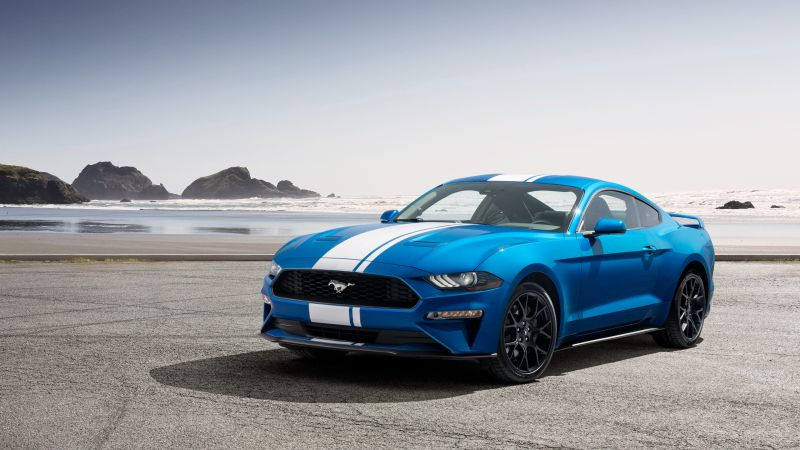 Ford Mustang, muscle car, blue, 2019 Cars, 4K (horizontal)