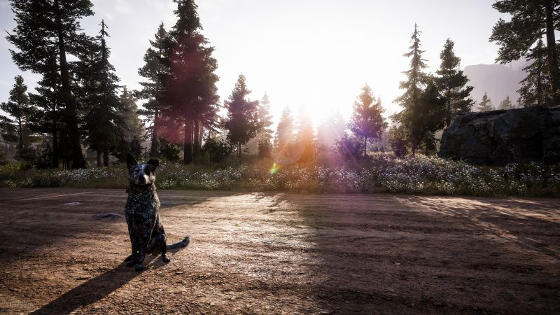 Far Cry 5, Hope County, screenshot, Think Divine, 4K (horizontal)