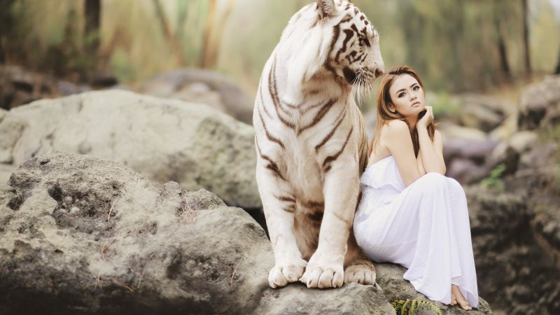 Girl, White Tiger, blonde, 5K (horizontal)