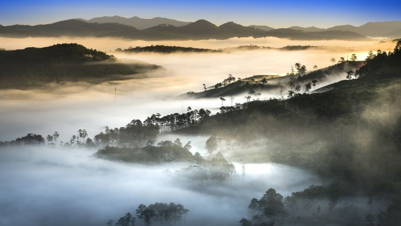 sunset, fog, forest, mountains, 8K (horizontal)