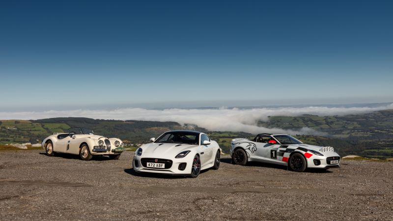 Jaguar F-Type Rally Car, 2018 Cars, 8K (horizontal)
