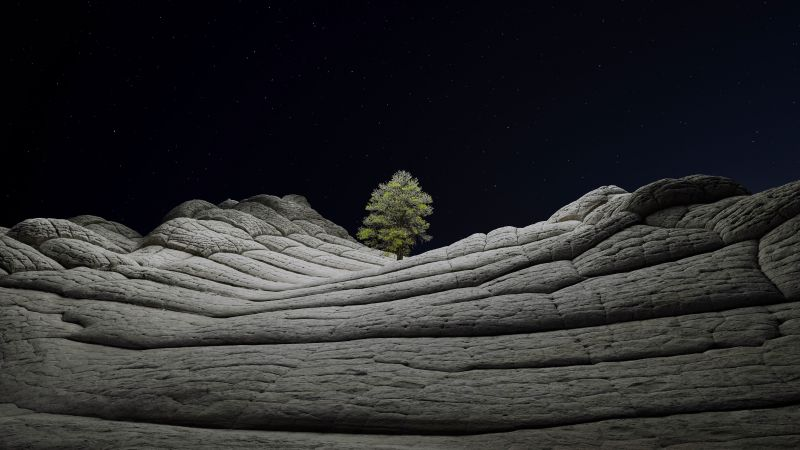 iOS 14.2, Desert, Tree, Night, 4K (horizontal)