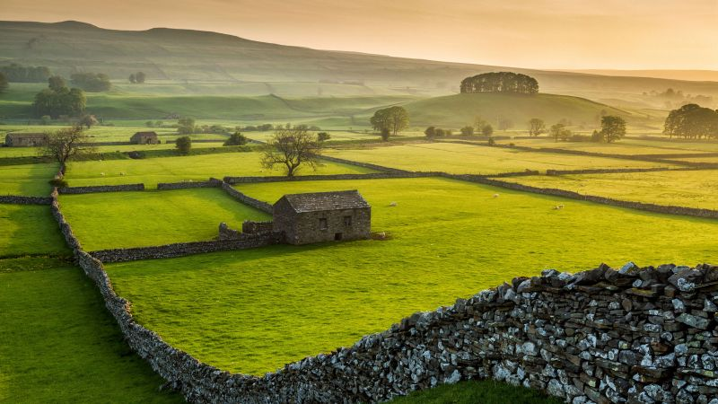 Wensleydale, Yorkshire Dales National Park, North Yorkshire, green, grass, summer, 5K (horizontal)