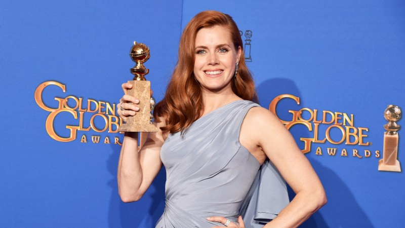 Amy Adams, Most Popular Celebs in 2015, actress, singer, American Hustle, Big Eyes, Best Actress (horizontal)