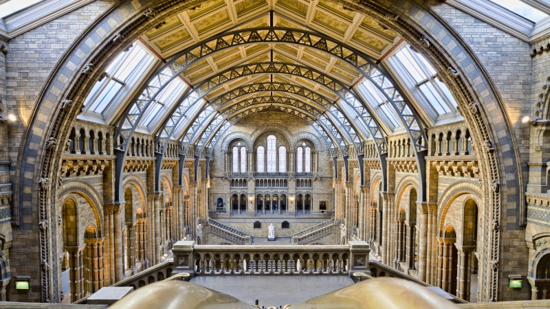 Natural History Museum, London, tourism, travel, vacation, resort (horizontal)