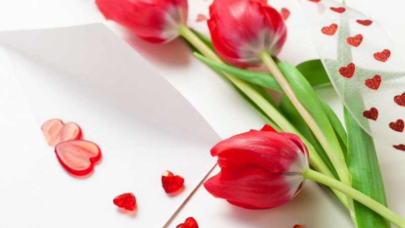Tulip, 5k, 4k wallpaper, spring, flower, red, heart (horizontal)