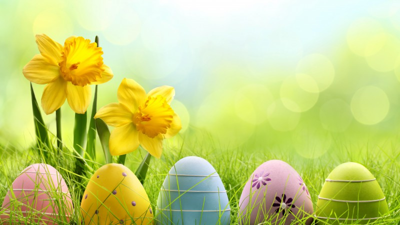 Easter, spring, flowers, eggs, basket (horizontal)