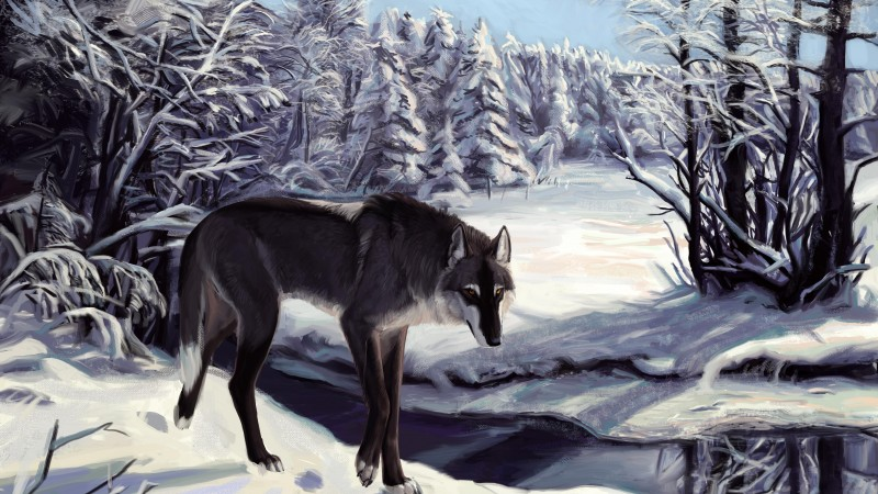Wolf, winter, lake, sight, gray, white, forest, alone, art (horizontal)