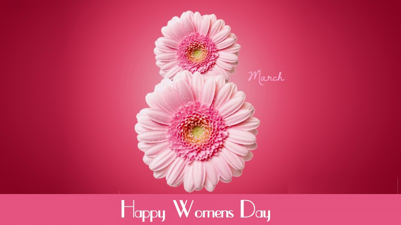 International Women's Day, March 8, flowers, pink, gerbera (horizontal)