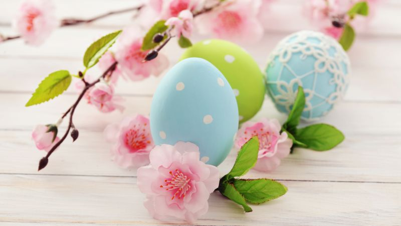 Easter, eggs, branch, flowers (horizontal)