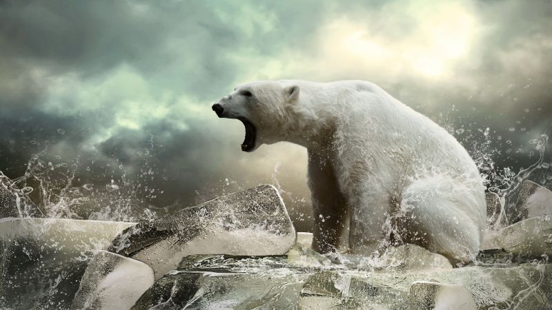 Polar bear, ice, roar, ocean (horizontal)