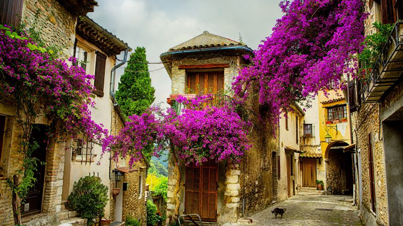 Provence, France, Tourism, Travel (horizontal)