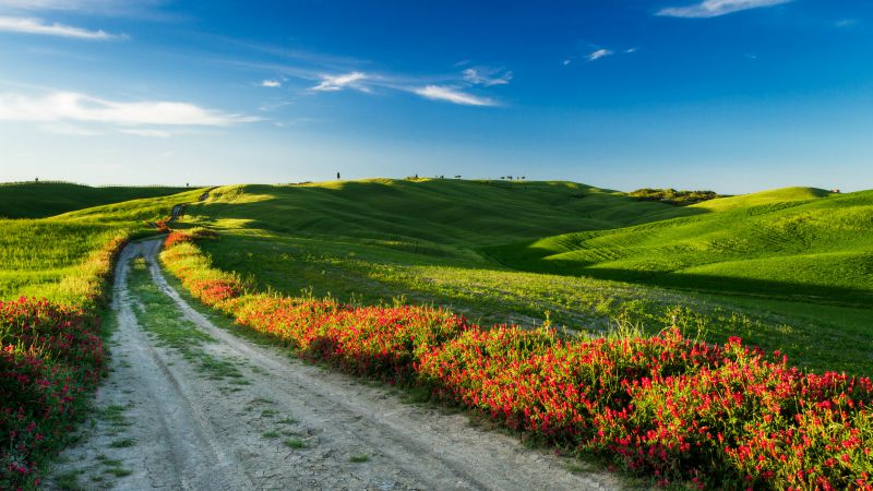 Tuscany, 4k, HD wallpaper, Italy, Meadows, road, wildflowers, sky (horizontal)
