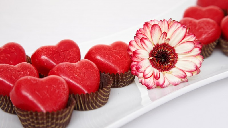 Valentine's Day, February 14, flowers, chrysanthemum, chocolate, candy, hearts, love (horizontal)