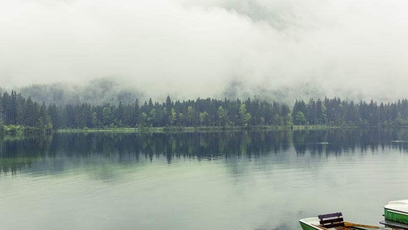 Berchtesgadener Land, 5k, 4k wallpaper, 8k, Bavaria, Germany, lake, fog, pines (horizontal)