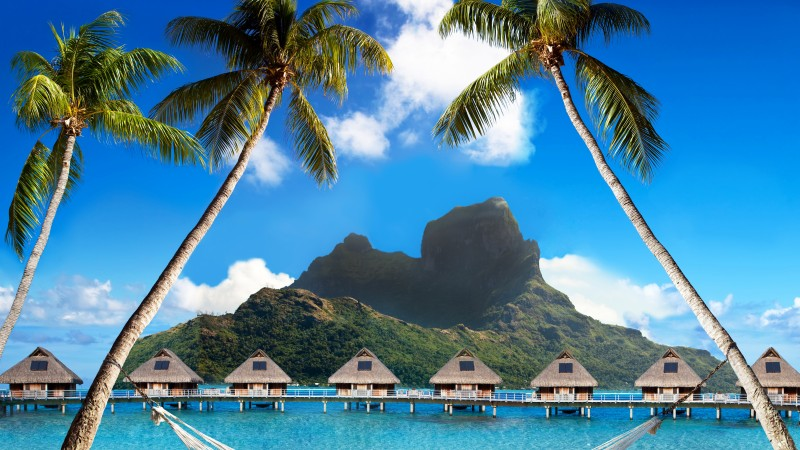 Bora Bora, 5k, 4k wallpaper, French Polynesia, Best beaches of 2017, Best Hotels of 2017, ocean, palm trees, mountains, beach, vacation, rest, travel, booking, palm trees, hammock (horizontal)