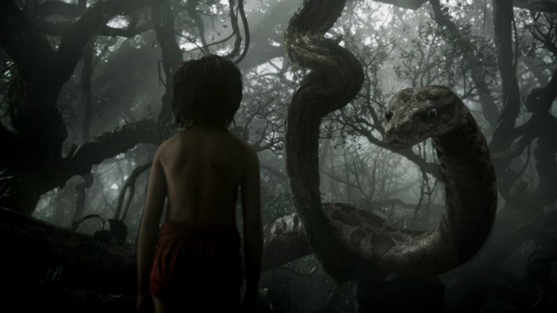 The Jungle Book, Mowgli, Kaa, adventure, fantasy, Best movie of 2016 (horizontal)