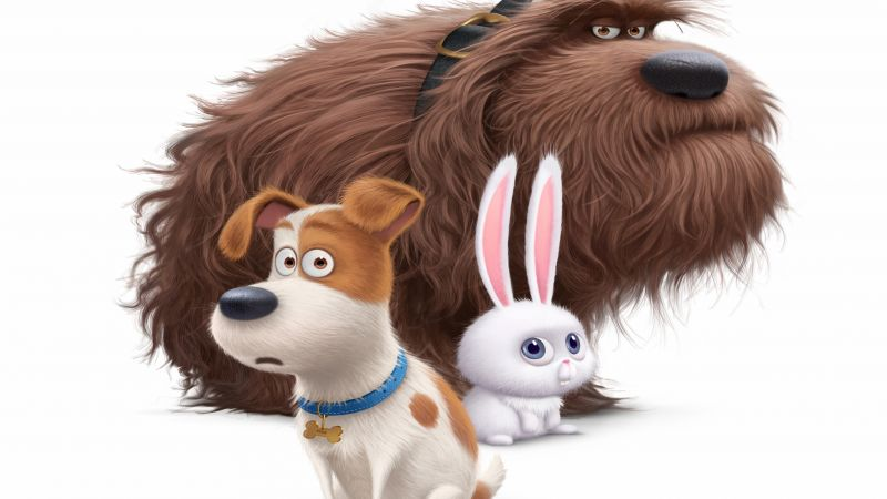 The Secret Life of Pets, Best Animation Movies of 2016, cartoon (horizontal)