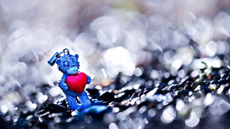 Valentine's Day, February 14, heart, love, holiday, gift, Bear, bokeh (horizontal)