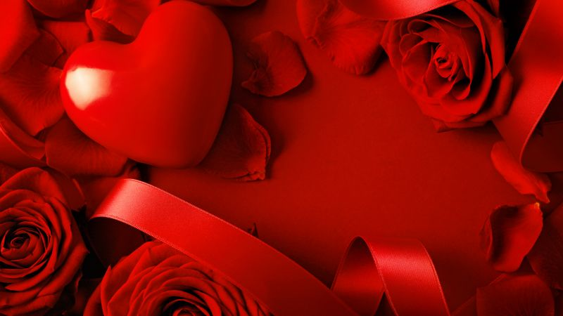 Valentine's Day, Heart, Rose, red, ribbon, romantic, love (horizontal)