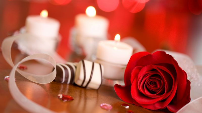 Valentine's Day, rose, candle, ribbon, romantic, love (horizontal)